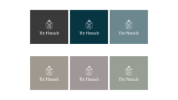 The Pinnacle real estate logo in white against 6 different colour backgrounds