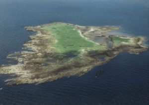 Horse Island which sold off plan for €5.5m proving the power of video in property marketing
